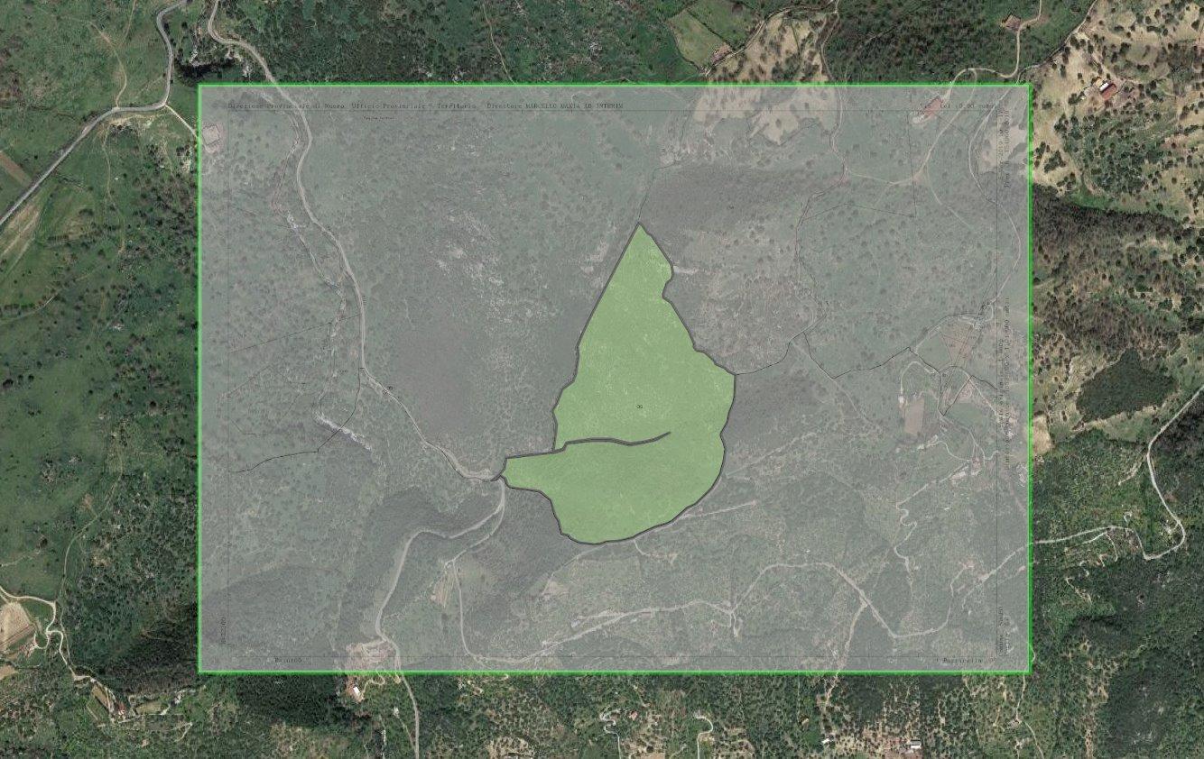 Mappe catastali online su Google Maps e Ortofoto